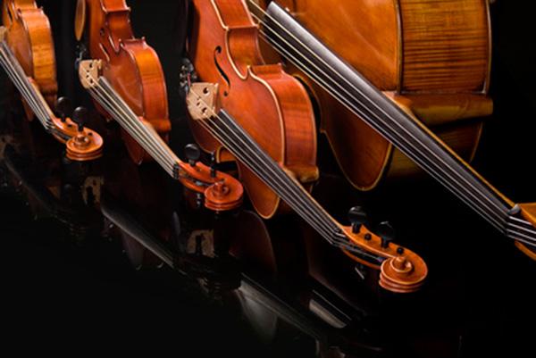 instrumentos-cuerda-frotada